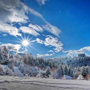 armonia unei zile insorite de iarna