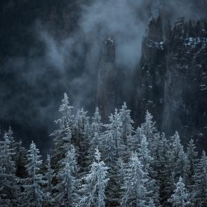 Cenușiu de iarnă