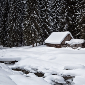 Iarna de basm