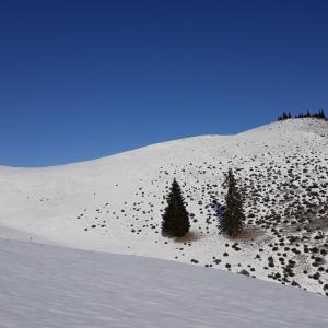 Iarna in muntii Ciucului