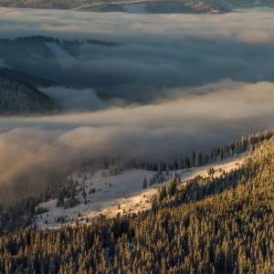 Râuri de ceață