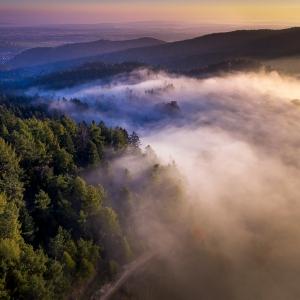 Dimineata in Bucovina