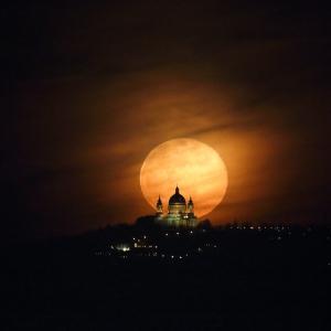 Luna rosie.