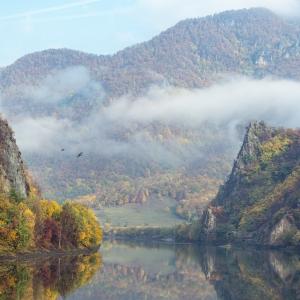 When autumn touches nature
