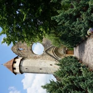 Biserica Darmata