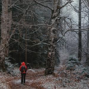 One peculiar trail
