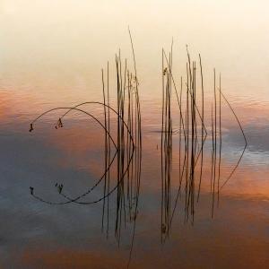 Reflexii la apus